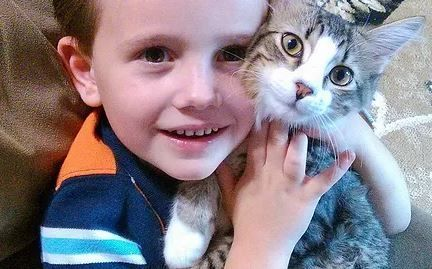 6-year-old's 'Hats for Cats' business supports cat rescues, animal shelters & sanctuaries