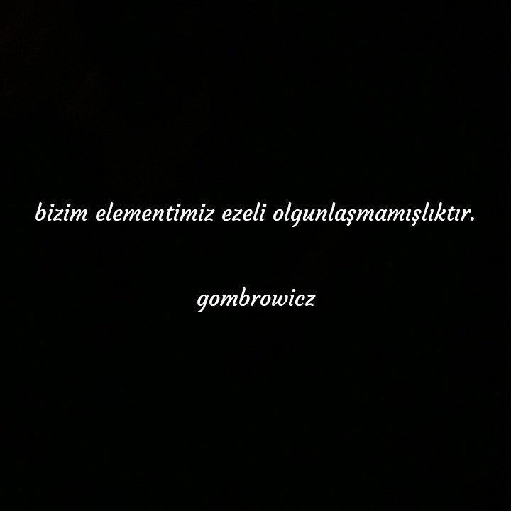 #gombrowicz #literatura #books #