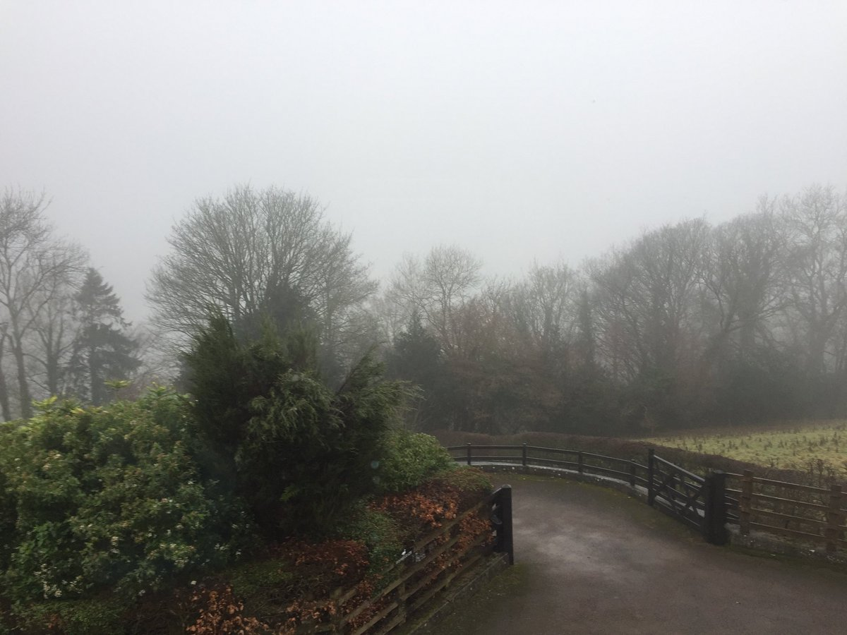 test Twitter Media - Away today - this is the foggy view! Still, you never know: it might just clear up ... https://t.co/wC35yxc0yQ
