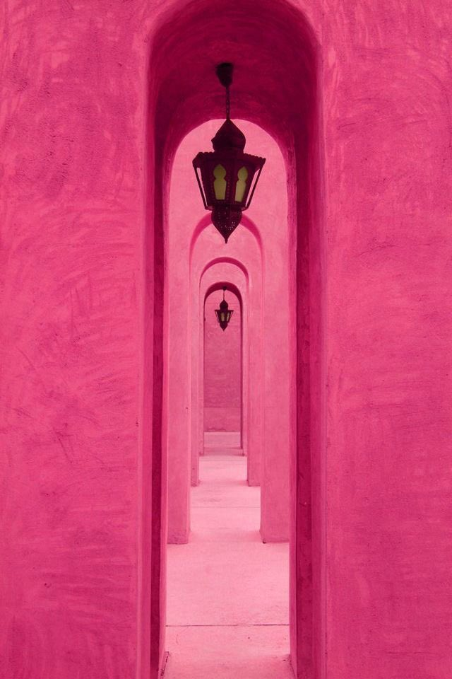 The Pink One - cover