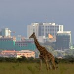 Nairobi named third best place to visit in the world