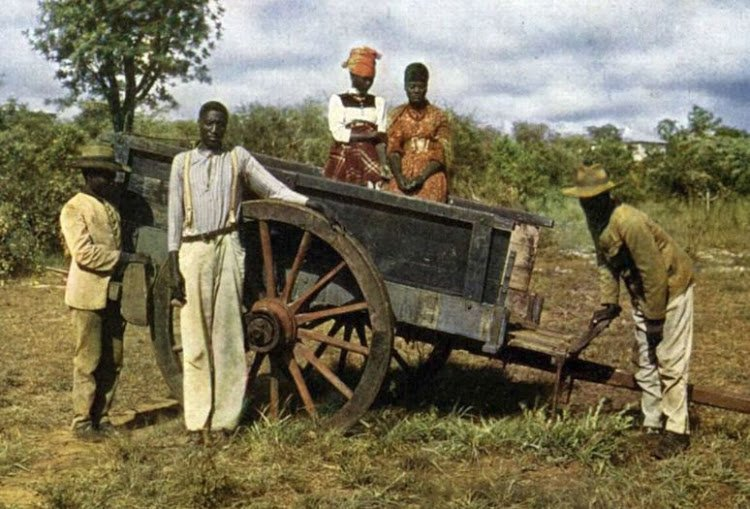 Genocide negotiations between Germany and Namibia hit stumbling blocks