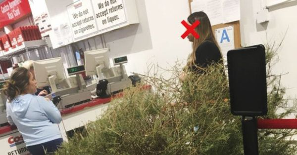 Woman Returns Dead Christmas Tree to Costco on Jan. 4
