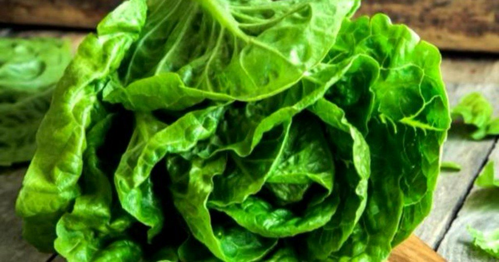 More illnesses linked to E. coli in leafy greens, possibly romaine lettuce