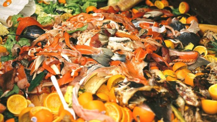 How you can turn your food waste into homemade cooking gas