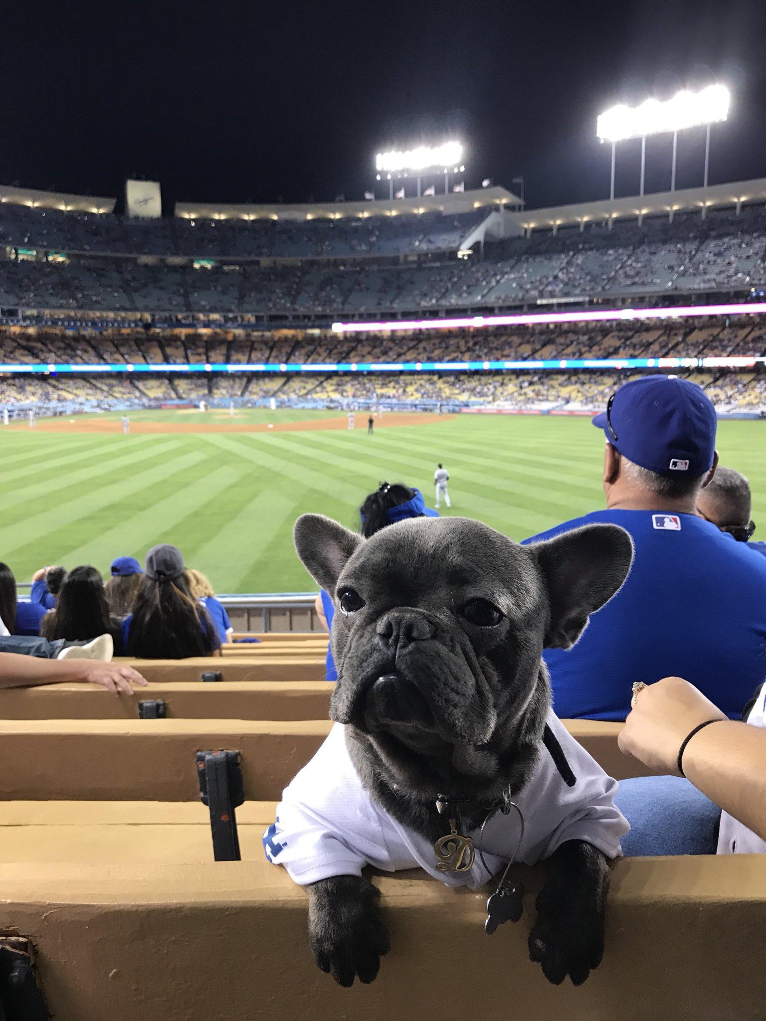 @Dodgers  https://t.co/VBwLnxQUK7