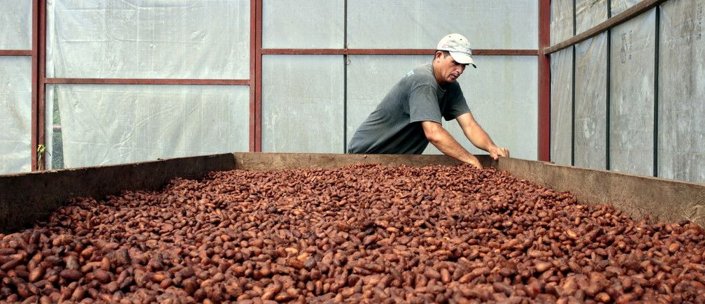 test Twitter Media - By 2050 cacao plants may not survive due to rising temperatures #climatechange https://t.co/zR55ZyFq0G https://t.co/JR8zMIAJPW