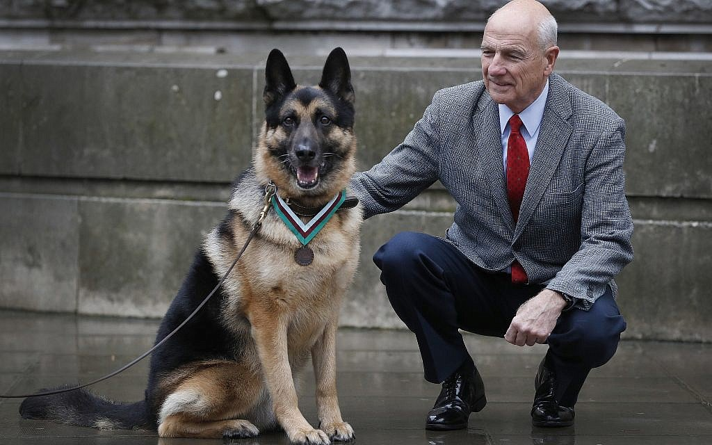 US Army WWII hero dog receives posthumous medal