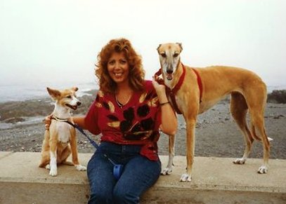 test Twitter Media - Blast from the past!  Wheat in 1987.   Photo: Janice E.C. #greyhound #dogs https://t.co/z3fBLY0Wvz