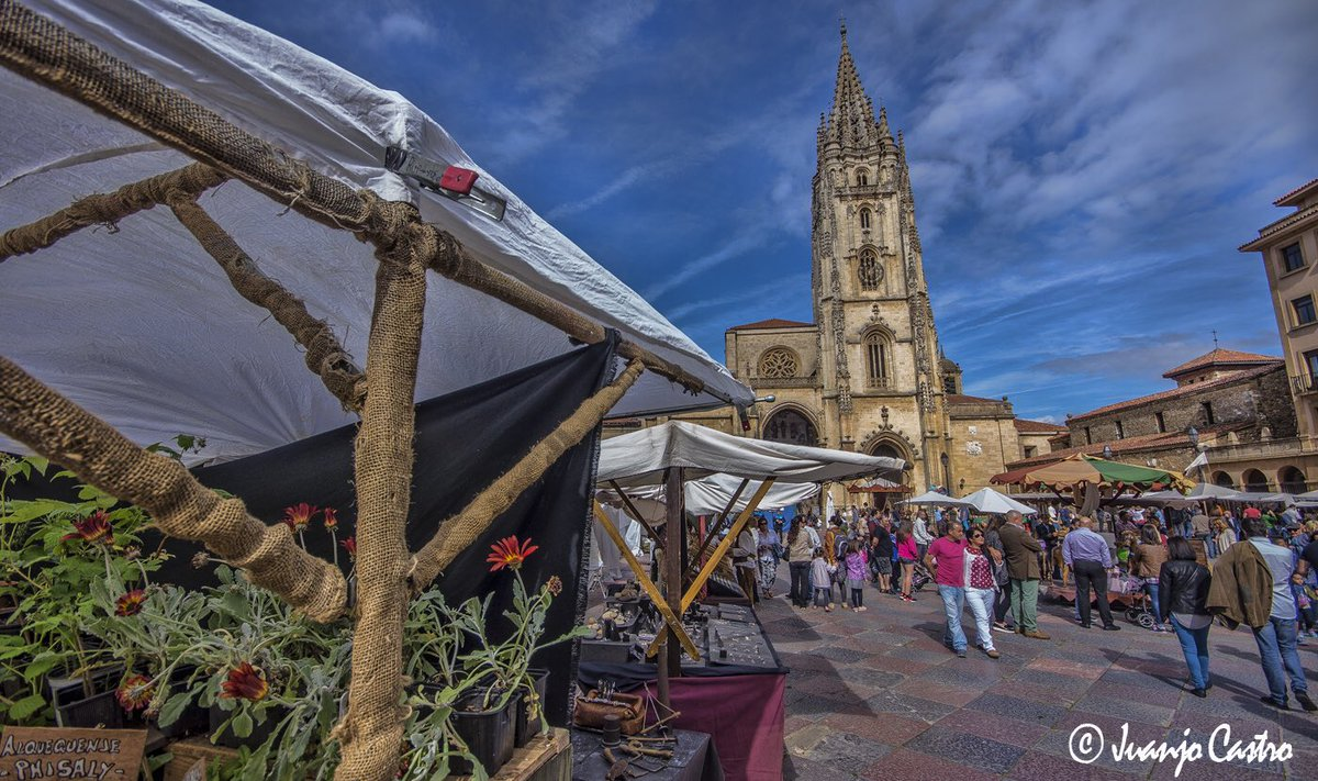 RT @juanjocastro: #AsturiasenFitur https://t.co/TobgRTpBvw