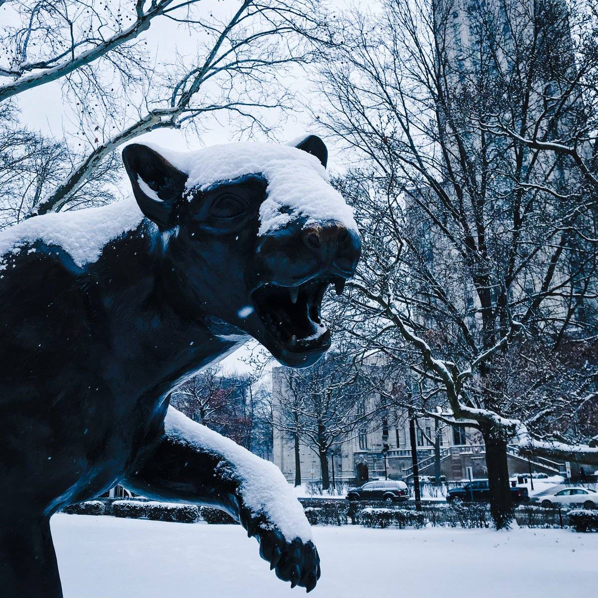 RT @H2Ppatrick: Stay warm out there, Panthers #h2p https://t.co/yYxMi8hVMm