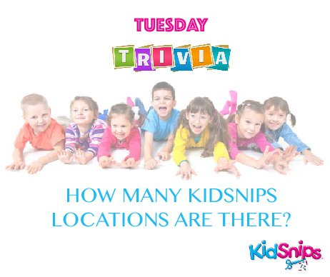 test Twitter Media - #TuesdayTrivia: How many locations does #KidSnips have? Answer for a chance to win a special #prize!! https://t.co/Orlmir9Jme https://t.co/20j1hJWwGz