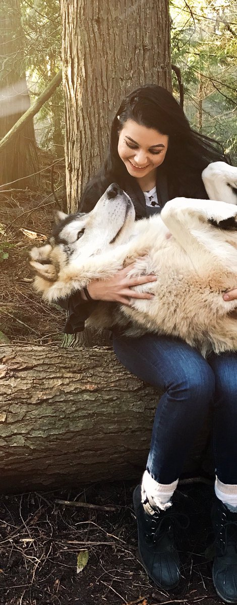 So full of love and wonder thanks to this Wolfy 🐾 N2InymuOQX