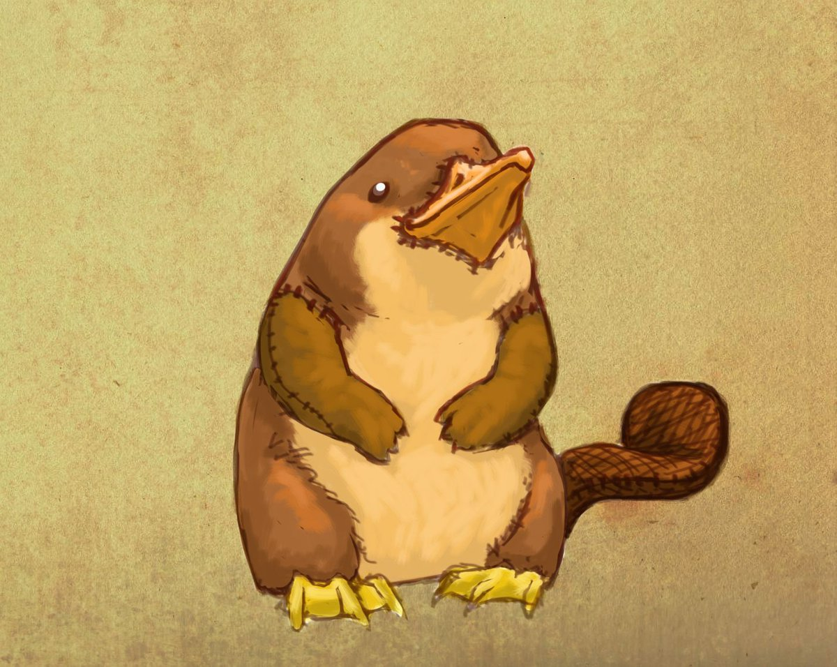 Prize (not really) for whoever comes up with the best name for this platypus: https://t.co/izQbzCICWU https://t.co/YFV5h2cW81