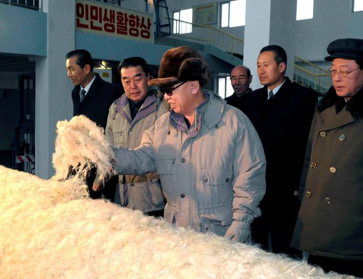 Special Report: The fabulous story of North Korea's fabric made of stone