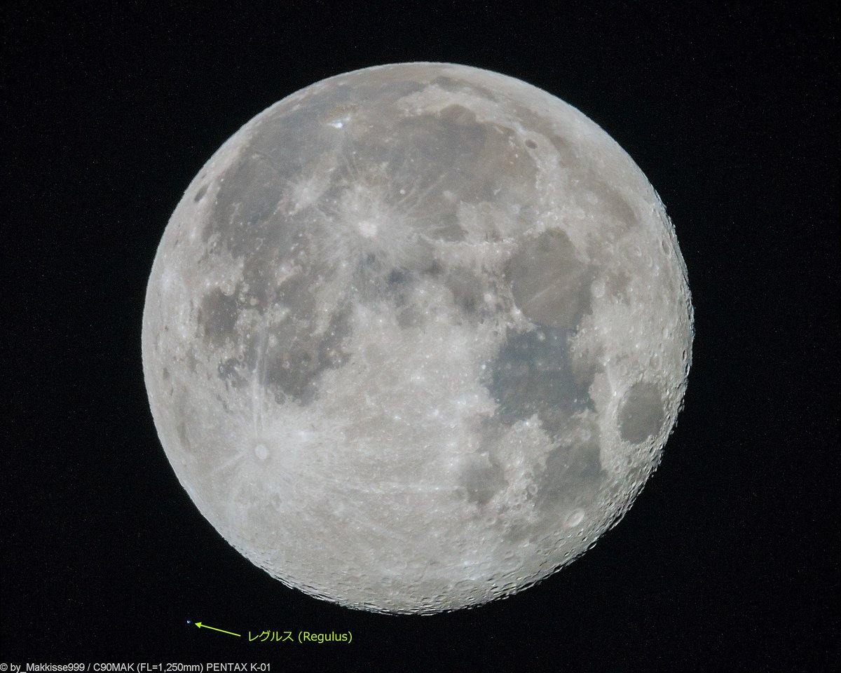 2月2日のお月様。05:12頃, 月齢15.75, 輝面比97.6%, 高度37°, 方位262°。ほんの少し霞みがかった空ですが、月の周辺には雲はありません。満月から少しだけ欠けた月の側に、しし座の一等星レグルスが接近しました。(当地ではレグルス食にはならず) #月 #Moon #レグルス https://t.co/dNBLUQSdxd