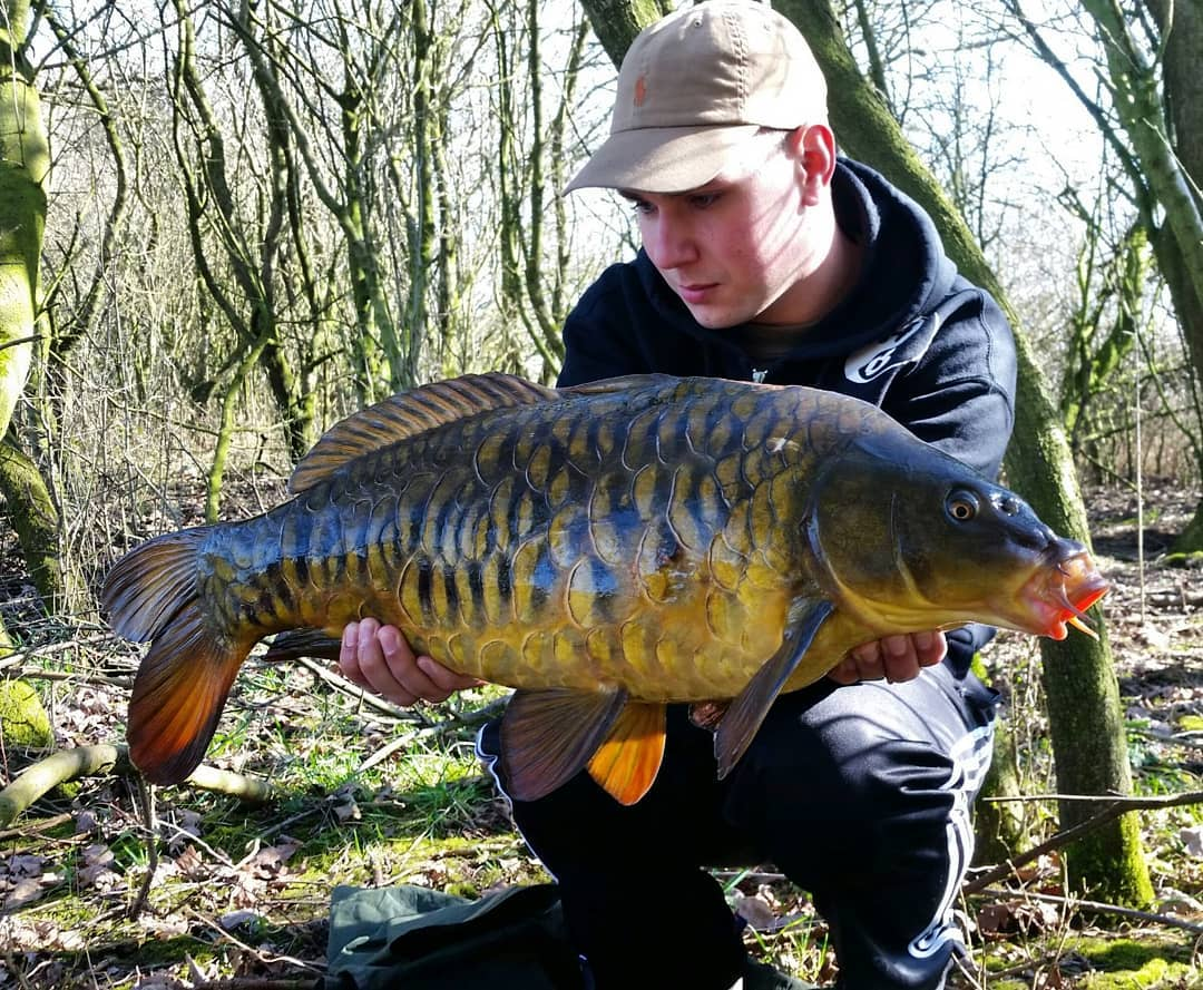 What a catch, great condition and look at those <b>Scales</b> 😍😍😍🐟🐟🐟 #badangling #