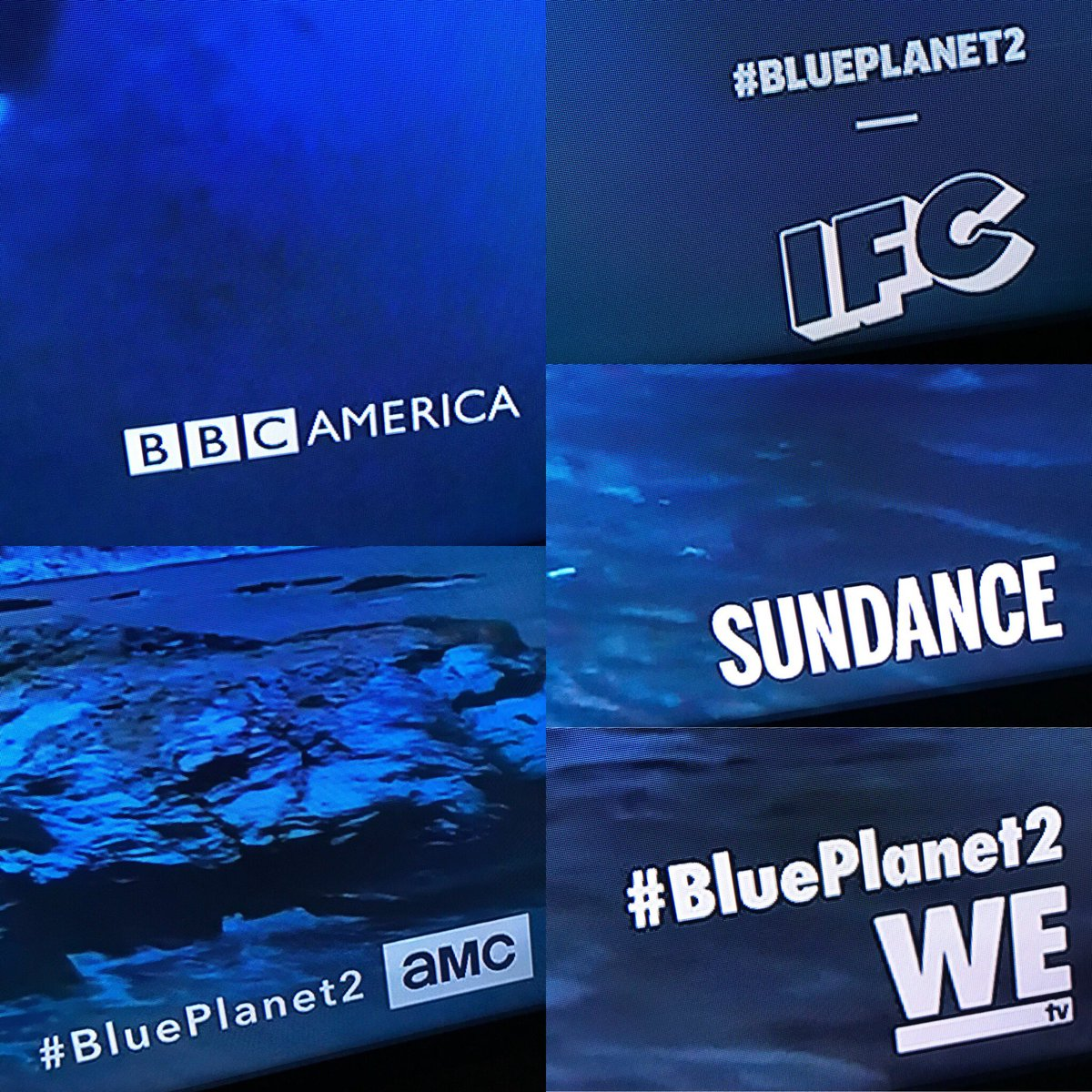 #BluePlanet2 premiere rates the rare five-network AMCN simulcast. Deserved. Picks up again next Saturday at 9 on @BBCAMERICA. https://t.co/vvl4KeNJu5