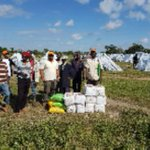 Lamu residents get relief food after fleeing al Shabaab attack
