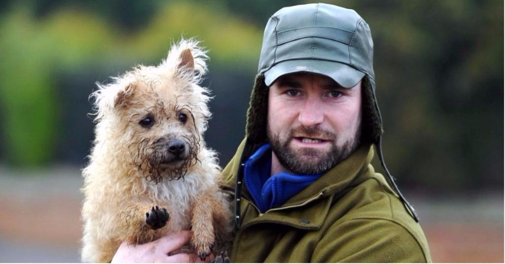 Tara the terrier kills 600 rats in mission to destroy rodents terrorising children too scared to play outside