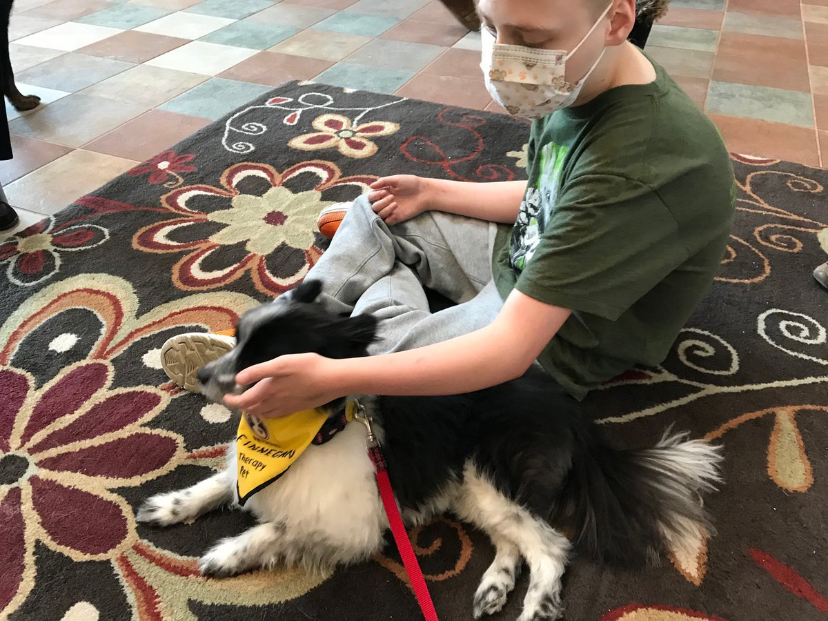 test Twitter Media - @RMHCincinnati Thanks for hosting our @pet_partners teams this weekend! Finn enjoying his new friend. https://t.co/oAtPn4p7xd