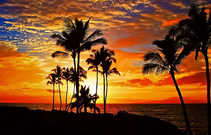 RT @ItSooBeautiful: Hawaii by Janine Russell https://t.co/vEl5GzgNVn