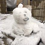 RT : 孫っちが作った雪だるまだけど 犬みたいな顔なんですけど(笑) #雪だるま...