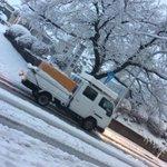 RT : 八王子❄️ヤバイ☃️ 店前 積雪20㎝  八高線陸橋 車 立往生...