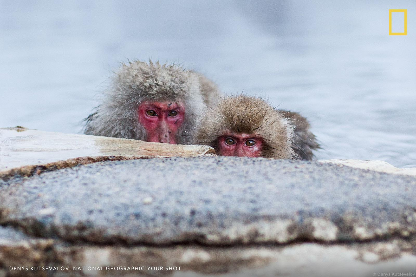 Help us caption this photo by #YourShot Photographer Denys Kutsevalov: https://t.co/r2ly8Ow70c https://t.co/irtWl2zEm2