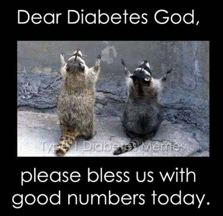 test Twitter Media - Start your day with good numbers 🙏 . . . #GoodMorning #haveaniceday #BeStrong #diabetes #diabetic #Insulin #Type1 #type2  Photo by: @MyType1Diabetes https://t.co/S37im5bZ7F