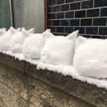 RT : 雪がヤバいので雪かきのついでに……雪のアイルー、ユキルー作っ...