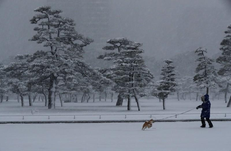 Snowstorm in Tokyo disrupts road, rail and air transport https://t.co/XTl3qztP8Y https://t.co/mMARcvvImy