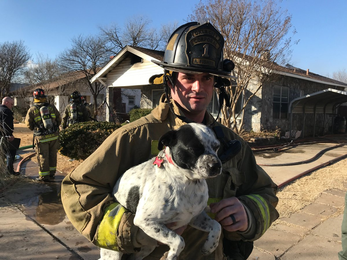 Oklahoma City firefighters rescue dog from housefire