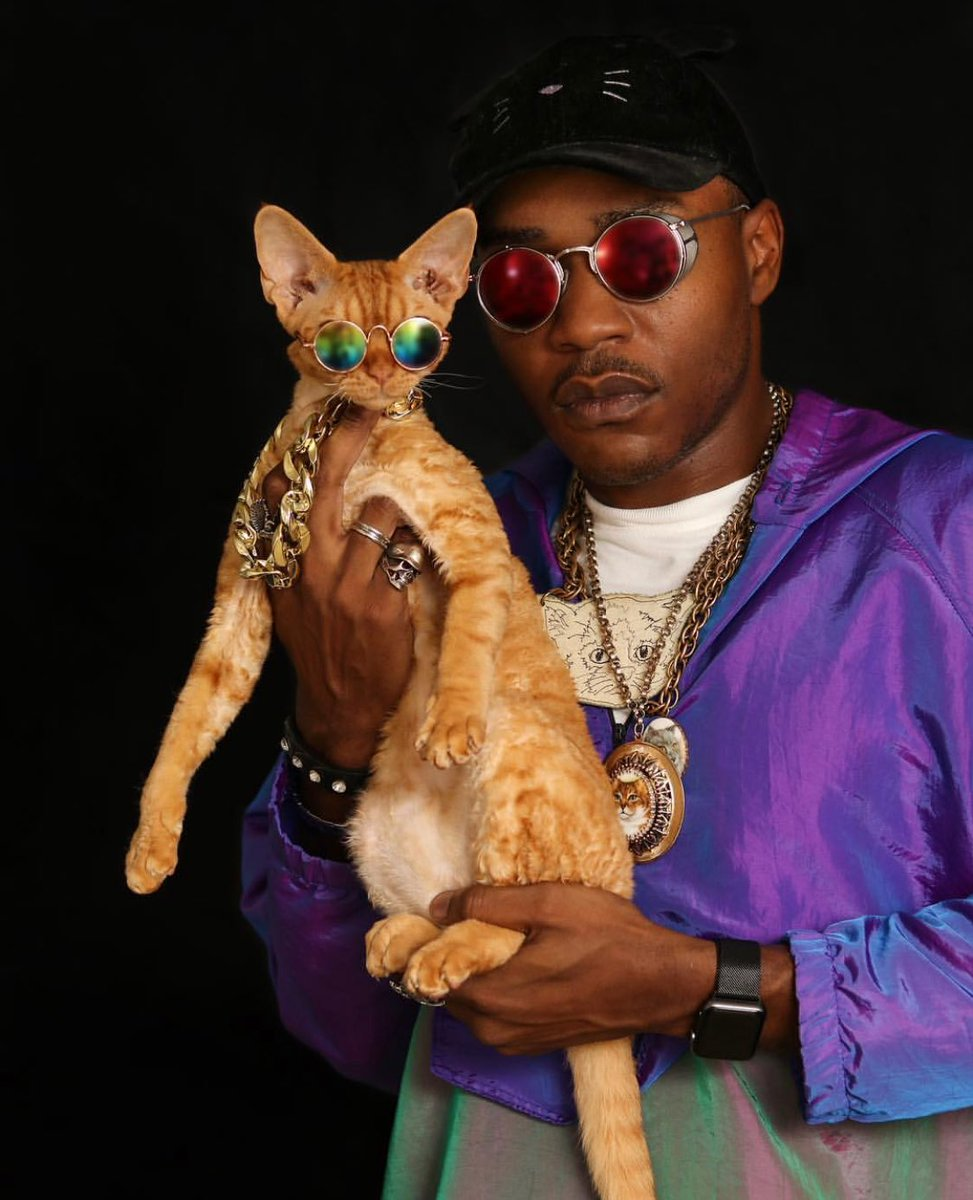 RT @iammoshow: Retweet this if my cat Dj Ravioli and I had a chance at building a life long friendship with you https://t.co/AlNXE3z1RB