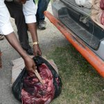 Poachers wrap game meat as parcels, ferry it for sale to unwary Nairobi residents