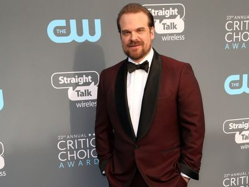 Stranger Things' star David Harbour is going to dance with penguins in the Antarctic