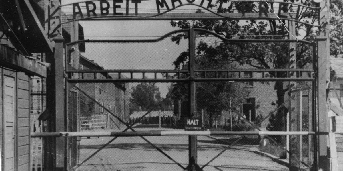 Art exhibit explores atrocities of the Holocaust