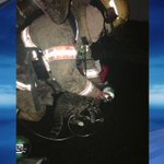 Portland firefighters rescue cat from mobile home fire