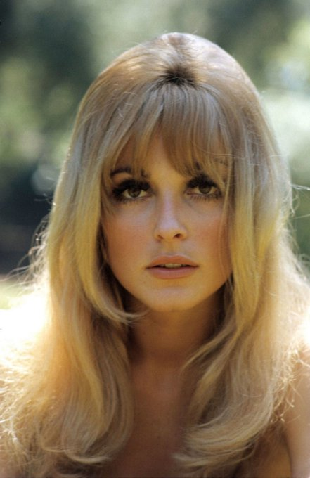Happy Birthday to the beautiful actress and model Sharon Tate, who would have been 75 today! (1943-1969)