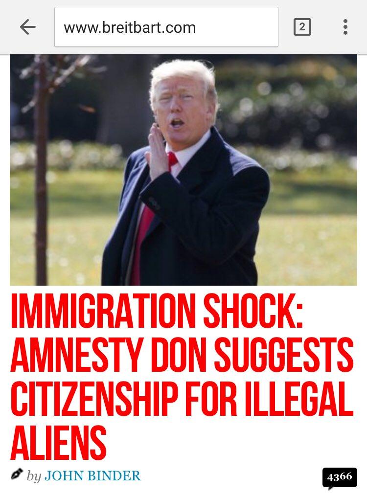 Amnesty Don