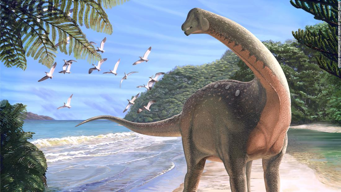 A bus-sized dinosaur has been found in Egypt, and it offers a clue to an ancient mystery