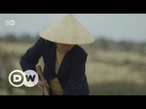 Extreme weather in Vietnam | DW English