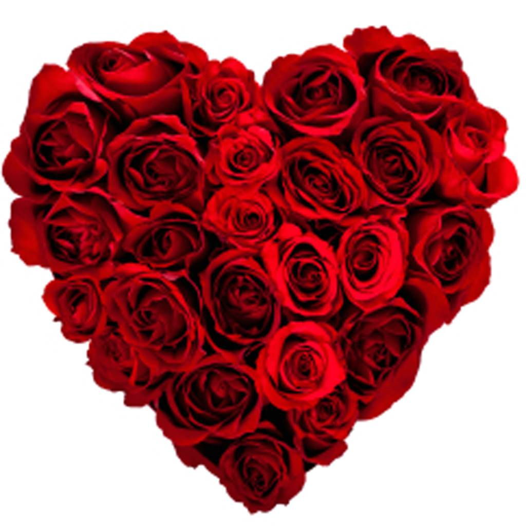 Reality check: Where does your bouquet of roses come from?