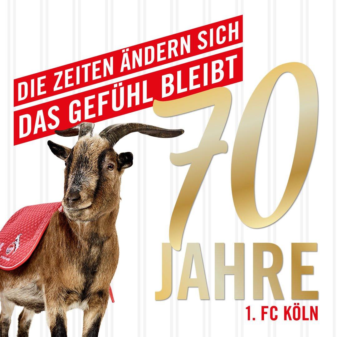 RT @fckoeln: 🎂 Happy Birthday, liebe #effzeh-Fans! Heute wird der 1. FC Köln 70 Jahre alt. 🎉🎊🎈 #effzeh70 https://t.co/42yr9rIQyJ