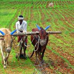 Agriculture fraternity in key meeting