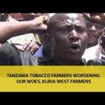Tanzania tobacco farmers worsening our woes - Kuria West farmers