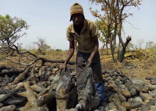 Hunters Burn Crops In Salaga