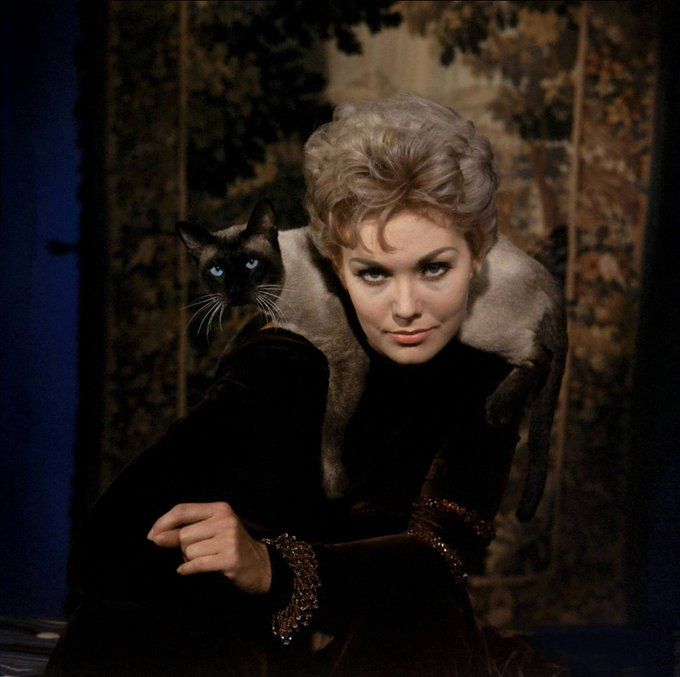 Happy Birthday to Kim Novak, star of one of my favorite comedies, BELL, BOOK AND CANDLE.