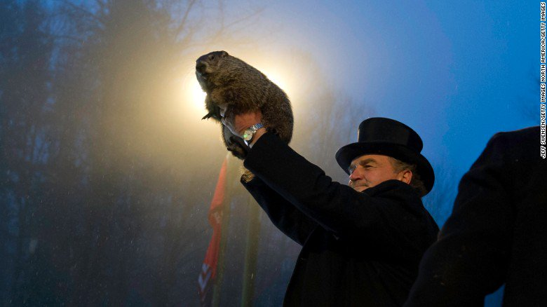 Punxsutawney Phil has spoken! Welcome to six more weeks of winter