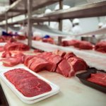 Amaya Triangle roots for modern beef farming to boost its exports
